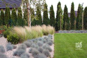 jednoducha zahrada s brizy